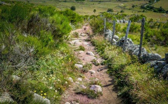 path-1459027_1280